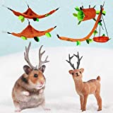 5 Pcs Hamster Cage Guinea Pig Cage