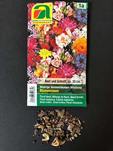 3 variedades | Surtido de semillas de flores | Set para flores de ...
