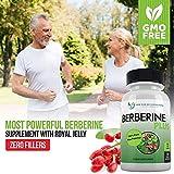 Berberine Plus 1200mg Per Serving - 120 Veggie