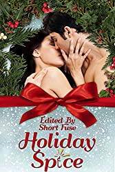 Holiday Spice (Hot Holiday Reads Book 1)