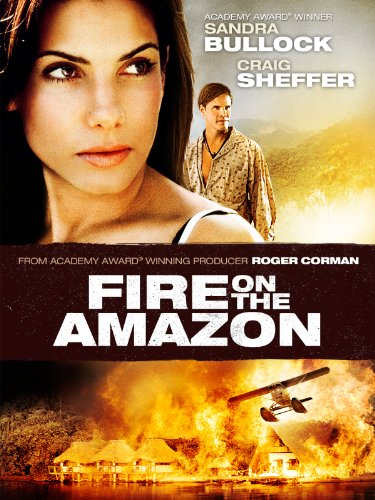 fire on the amazon - 1
