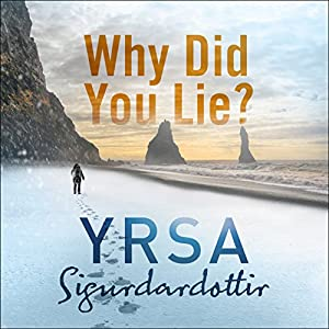 Why Did You Lie? Audiobook