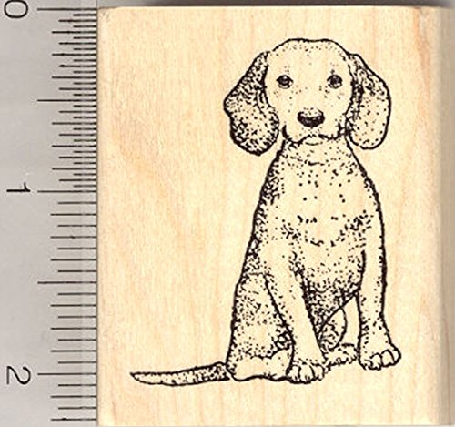 Beagle Dog Rubber Stamp, Sitting