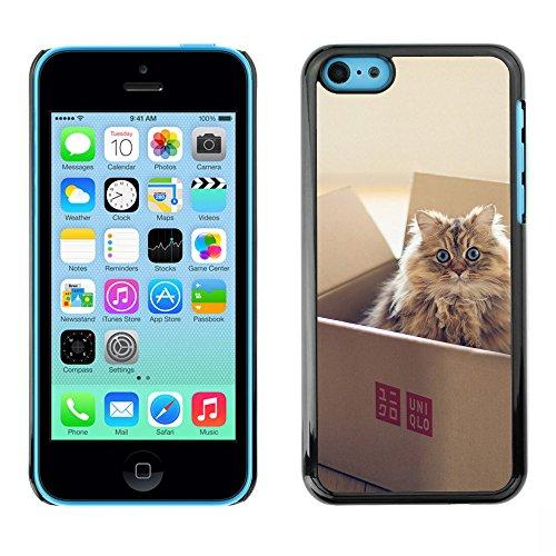 Omega Case PC Polycarbonate Cas Coque Drapeau - Apple iPhone 5C ( Cute Cat In A Box )