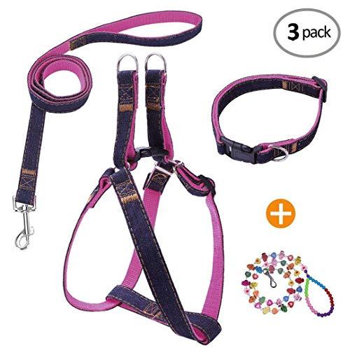 (Bark Lover Designer Denim Collar/Leash/Harness Set (M, Pink))
