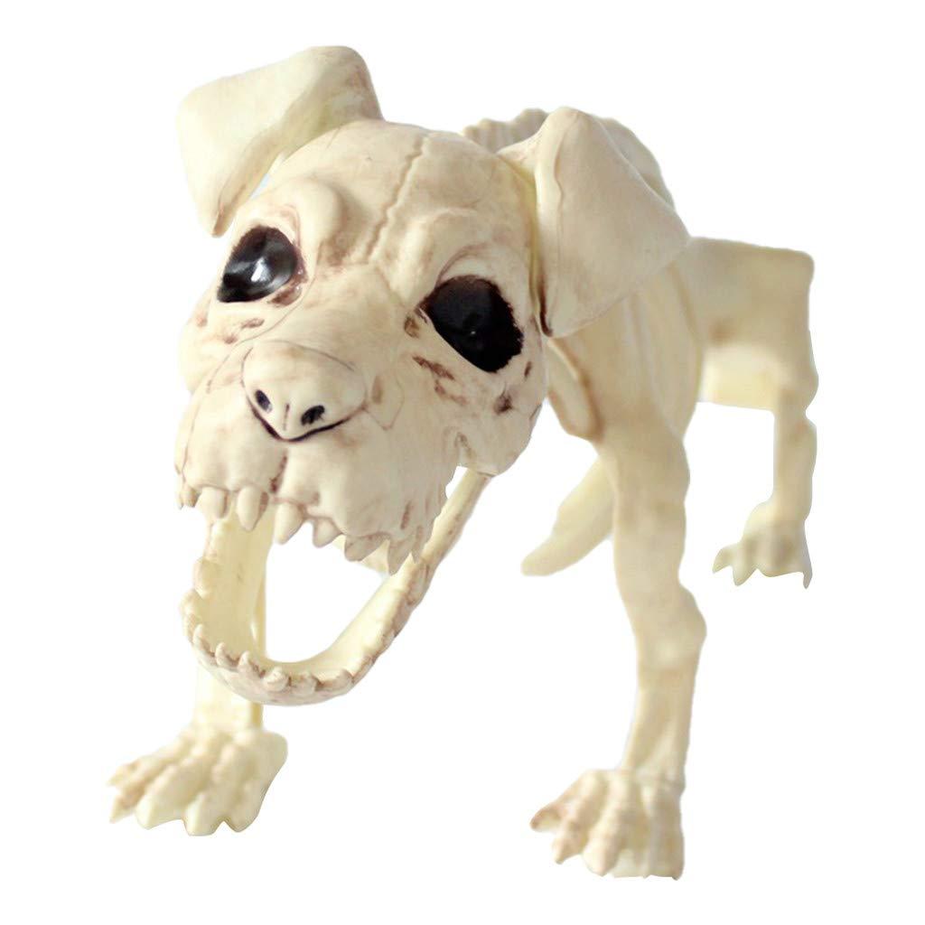 Meetsunshine Halloween Halloween Skeleton, Hyena Skeleton Props Animal Bones Party Shop Decoration Horror by Meetsunshine Halloween