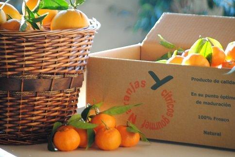 Caja de Mandarina Clemenules - 25kg