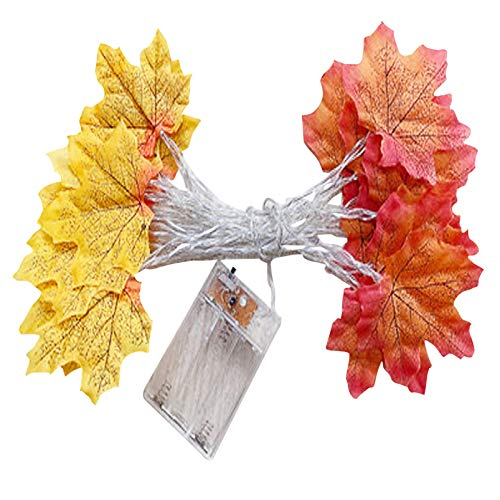 YUGHGH Thanksgiving Lights Fall Simulation Maple Leaves String Lights Thanksgiving Decorations,3 Meters&20 LED Maple Leaves Operated for Autumn Home Indoor Decor (3M, Yellow+red)