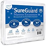 Queen (9-12 in. Deep) SureGuard Mattress Encasement - 100% Waterproof, Bed Bug Proof, Hypoallergenic - Premium Zippered Six-Sided Cover - 10 Year Warranty