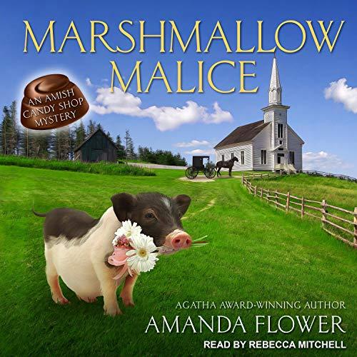 10 best audiobooks by amanda flowers