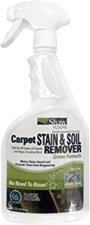 product image for Shaw R2X GREEN Carpet Stain & Soil Remover 32oz Spray