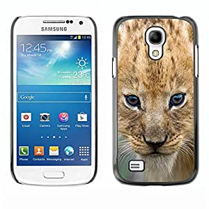 Caucho caso de Shell duro de la cubierta de accesorios de protección BY RAYDREAMMM - Samsung Galaxy S4 Mini i9190 MINI VERSION! - Lion Cub Puppy Wild Cat Africa Safari Brown Eyes