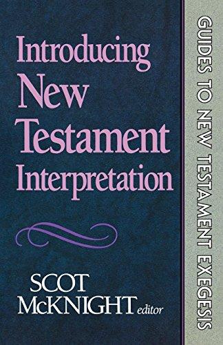 Grammatical Guide - Introducing New Testament Interpretation (Guides to New Testament Exegesis)