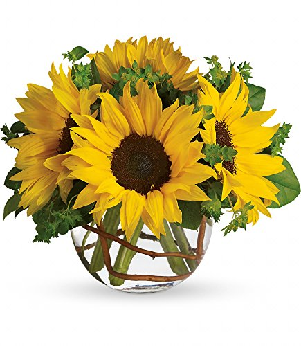 Chicago Flower Co. - Sunny Sunflowers - Fresh and Hand Delivered by Chicago Flower Company