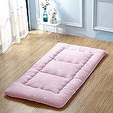student dormitory mattresses/folding the bedding is/single padded mattress/tatami mattress-E 150200cm(59x79inch)