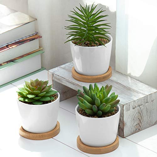 MyGift Mini Artificial Succulent Plants in White Ceramic Pots with Bamboo Saucers, Set of 3 (Assortment 4)