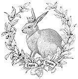 FRENCH LAPIN rabbit Ceramic child KNOB door cabinet drawer baby nursery pull