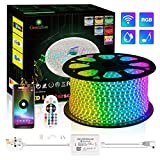 GreenSun LED Strip Lights Flexible RGB Rope Lights Multi Color Changing with 24Key Bluetooth Remote Controller for Indoor & Outdoor Party, Bar, Christmas Decoration (30m/98.4ft)