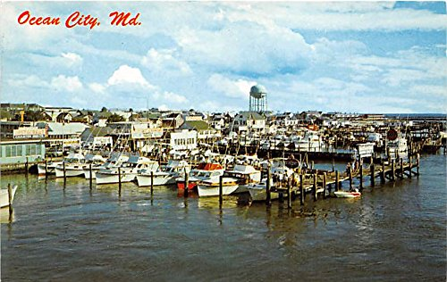 Ocean City, Maryland Postcard from Old Postcards