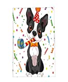 Interestlee Fleece Throw Blanket Birthday Decorations for Kids Black and White Boston Terrier with Colorful Party Backdrop Multicolor