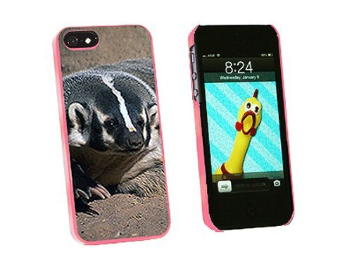 Graphics and More Badger Honey Snap-On Hard Protective Case for iPhone 5/5s - Non-Retail Packaging - Pink