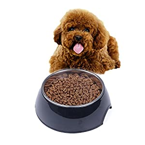 Super Design Dog Cat Bowls Melamine Stand Stainless Steel Bowls for Small Medium Large Dogs and Cats 102