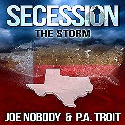 Secession: The Storm