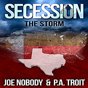 Secession: The Storm Audiobook