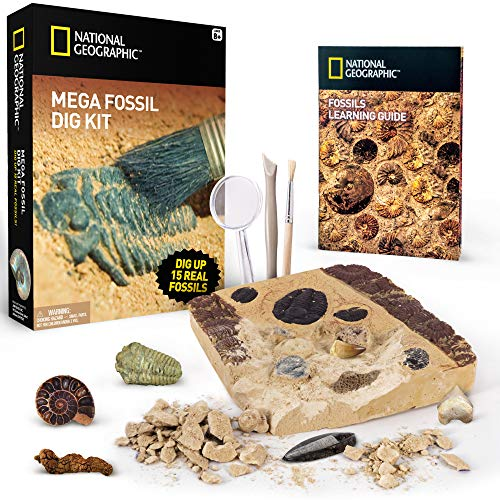 NATIONAL GEOGRAPHIC Mega Fossil Dig Kit – Excavate 15 real fossils including Dinosaur Bones, Mosasaur & Shark Teeth - Great STEM Science gift for Paleontology and Archeology enthusiasts of any ()