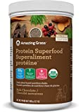 Amazing Grass Protein Superfood, Chocolate, 360 grams