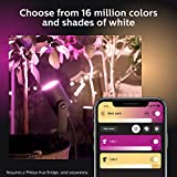 Philips Hue Lily White & Color Outdoor Smart Spot