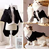 i'Pet Handsome Prince Cat Bridegroom Wedding Tuxedo Faux Twinset Design Small Boy Dog Formal Attire Doggy Party Wear Puppy Birthday Outfit Doggie Photo Apparel with Buttons Holiday Fabric Clothes Halloween Classics Collection Costume (Black Tuxedo, Medium)