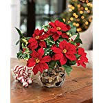 PETALS-Poinsettia-Holly-Silk-Holiday-Arrangement-Handcrafted-Amazingly-Lifelike-11-x-11-Inches