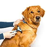 FurX Pet Grooming Tools - Pet Grooming Brush - Deshedding Tool & Pet Grooming Glove for Dog and Cat