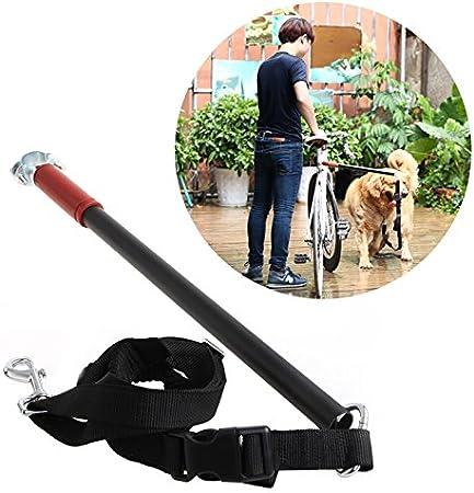 Poity Correa de perro bicicleta, manos libres, para mantener el ...
