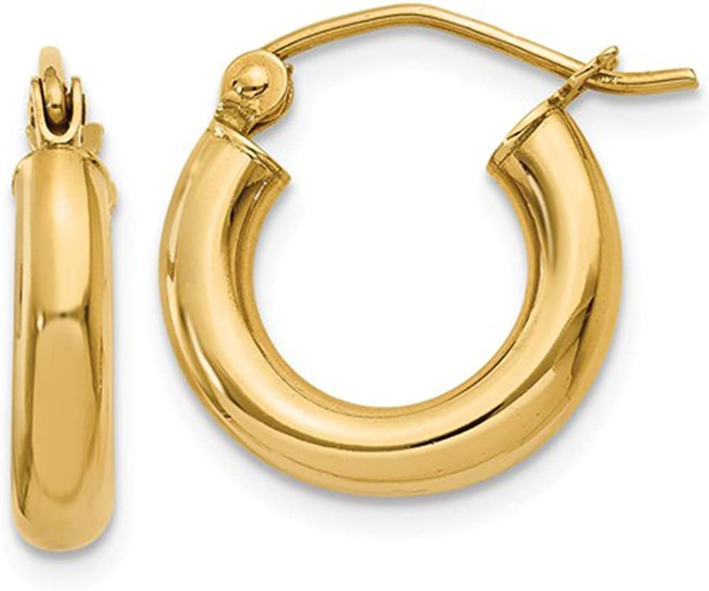 Small 14K Yellow Gold Thick Hoop Earrings (3mm Thick), All Sizes