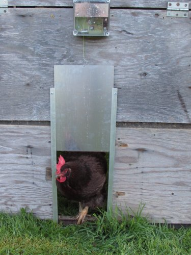 Automatic Chicken Coop Door Opener by Cheeper Keeper by Cheeper Keeper (Image #7)