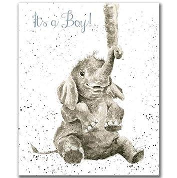 Wrendale tarjeta de felicitación it s a Boy recién nacido Baby Boy ...