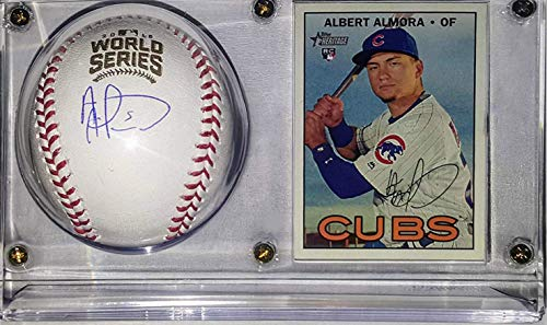 Cases Display Hat Mlb (Albert Almora Jr. Signed 2016 Cubs World Series Baseball - Fanatics & MLB COA Authenticated - Includes Ultra Pro Display Case & Topps Rookie Card)