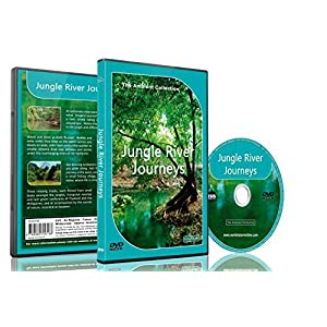 Relaxing Rainforest DVD - Jungle River Journeys with Nature Sounds