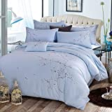 4 Piece Duvet Cover Set (1 Duvet Cover + 2 Pillow Shams+1 Flat Sheet) Duvet Cover Queen Set with Ultra-Soft Microfiber (100% cotton Queen ) , two