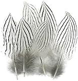 ERGEOB Natürliche Silberhühnerfedern Corsage Feather 5-8cm