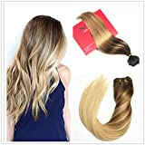 Stella Reina 120 Gram Full Thick Remy Human Hair Clip In Extensions Ombre Medium Brown to Ash Blonde Highlights Balayage Real Hair In 2 Colors 4/18 Full Head Clips On 20 Inch …