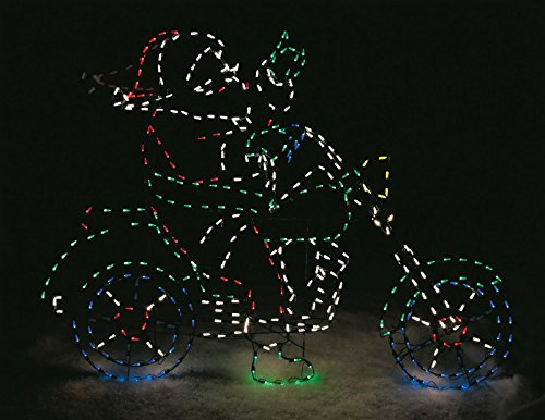 Outdoor Lighted Christmas Lawn Decorations - 7