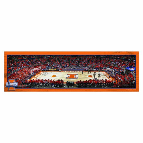 NCAA Illinois Fighting Illini Panoramic Arena View Wood Sign, 9 x 30-Inch