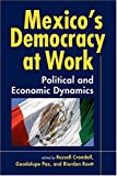 Mexico's Democracy at Work 9781588263254