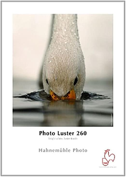 Hahnemühle Digital Fineart Photo Luster Fine Art Photo Luster Paper 25 Sheet S Bürobedarf Schreibwaren