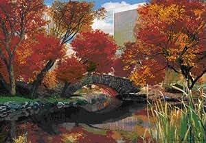 (19x27) Central Park New York City Seasons 3-D Lenticular Poster Print