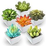Pack of 6 - Mini Fake Succulents Artificial Plants - Ceramic White Potted Succulents - Faux Succulents Plants for Home Office Shelf Decorations Larger Image
