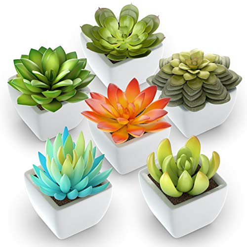 Pack of 6 - Mini Fake Succulents Artificial Plants - Ceramic White Potted Succulents - Faux Succulents Plants for Home Office Shelf Decorations (Faux Succulent)